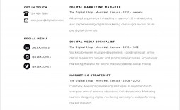 006 Fascinating Resume Template For Free Highest Quality  Best Word Freelance Writer Microsoft