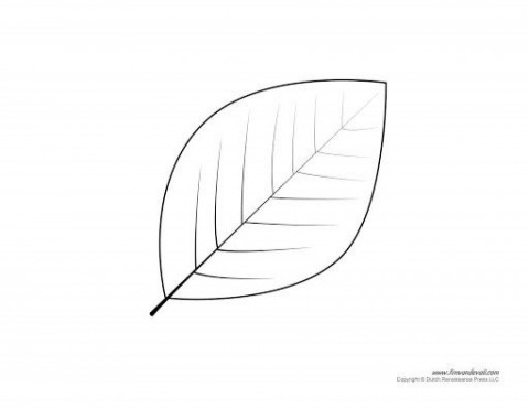 006 Fearsome Blank Leaf Template With Line Highest Quality  Printable480