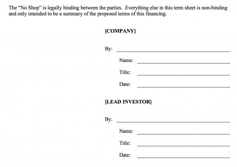 006 Fearsome Term Sheet Template Word Sample  Simple Loan Microsoft480