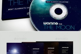 006 Impressive Cd Cover Design Template Photoshop Example  Label Psd Free