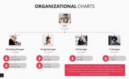 006 Impressive Organizational Chart Template Powerpoint Free Highest Clarity  Download 2010 Organization