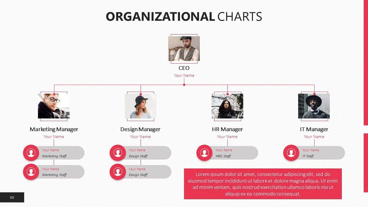 006 Impressive Organizational Chart Template Powerpoint Free Highest Clarity  Download 2010 OrganizationFull
