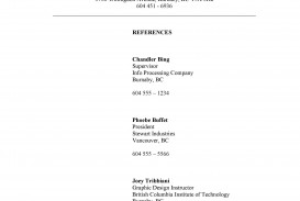 006 Marvelou List Of Professional Reference Sample Design  Template Employment Format Job Example