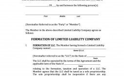 006 Marvelou Llc Partnership Agreement Template Image  Operating Free