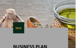 006 Outstanding Virgin Startup Busines Plan Template Pdf Highest Quality