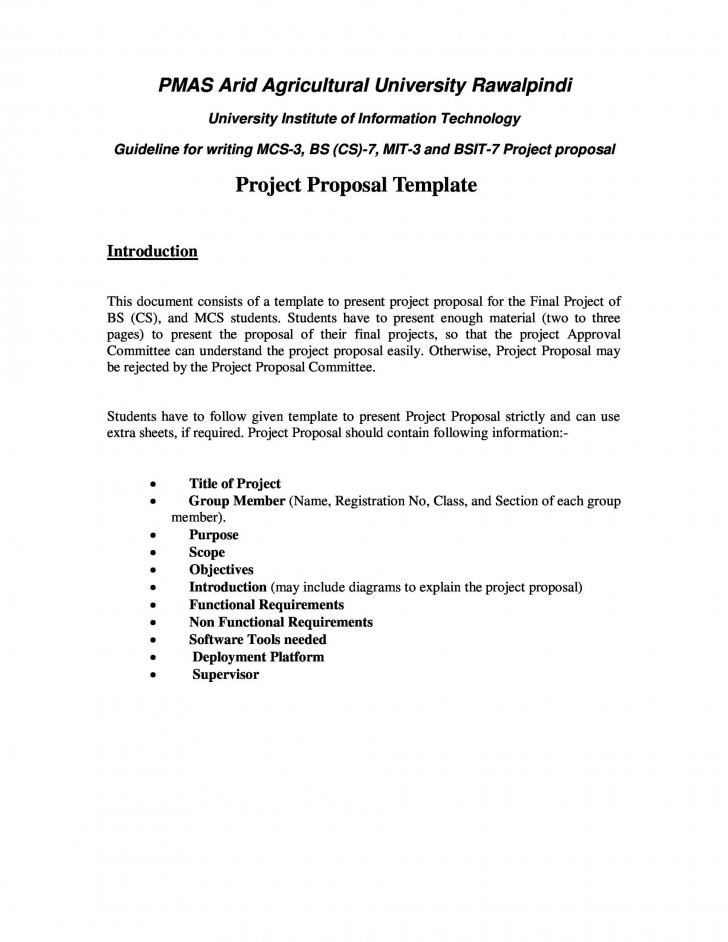 006 Phenomenal Web Development Proposal Template Free Picture 728