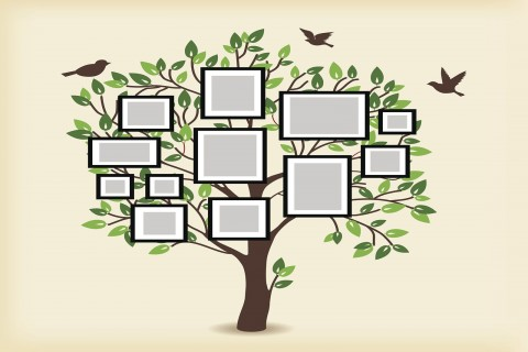 006 Remarkable Family Tree For Baby Book Template Sample  Printable480