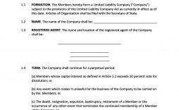 006 Remarkable Operation Agreement Llc Template Concept  Operating Pdf New York