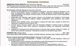 006 Sensational Professional Development Plan Template For Engineer Photo  Engineers Goal Example
