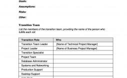 006 Sensational Software Project Transition Plan Sample Highest Quality  Template Excel