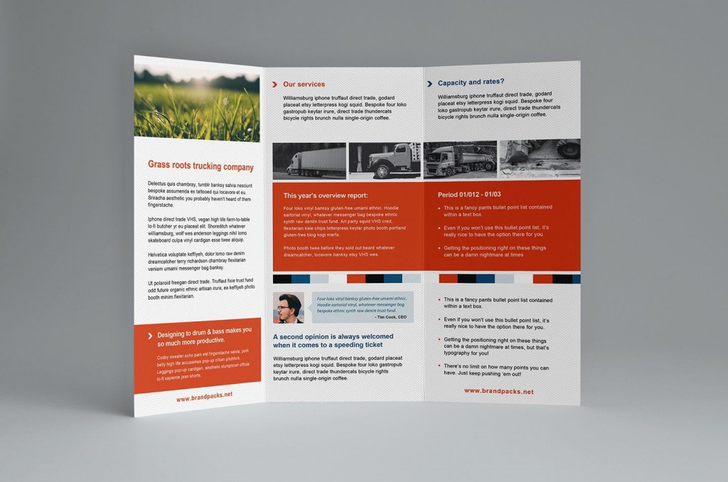 006 Shocking Brochure Template Microsoft Word Free Tri Fold Highest Clarity  Blank For 2010 DownloadLarge