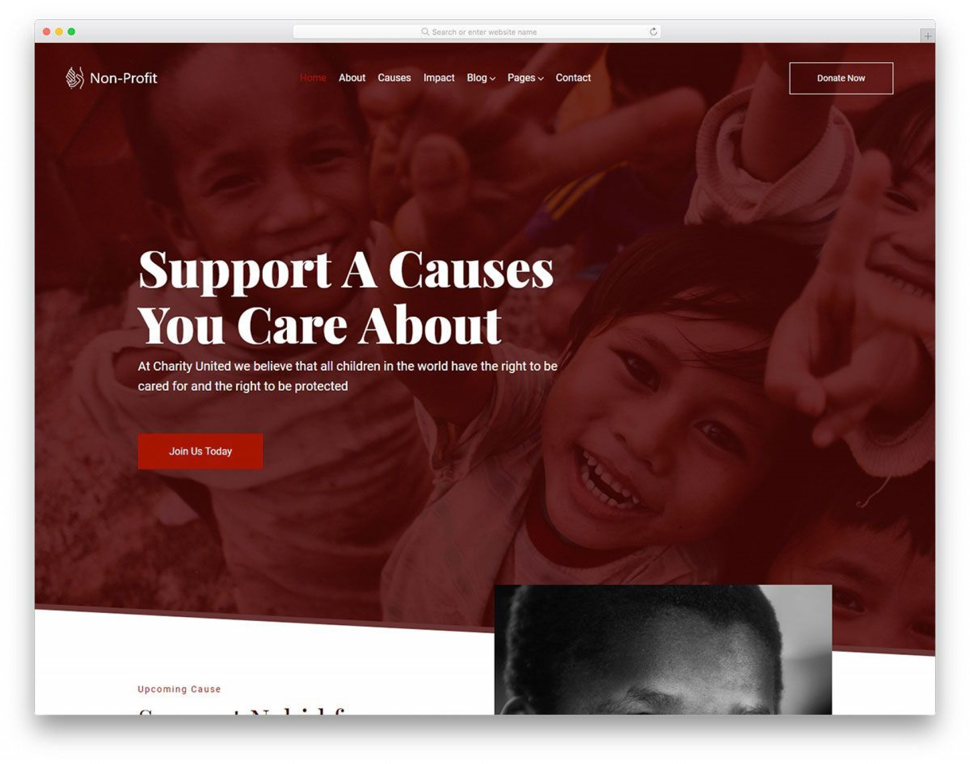 006 Shocking Free Non Profit Website Template Sample  Templates Organization Charity1920