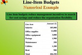 006 Shocking Line Item Budget Example  Format Meaning With