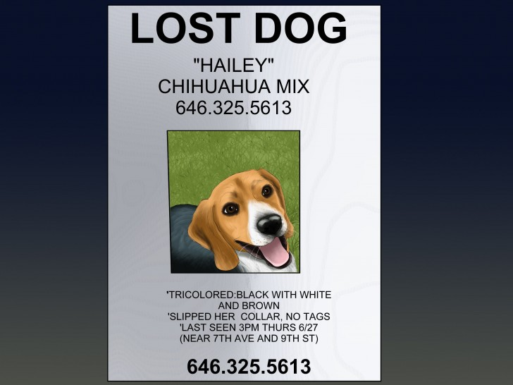 006 Simple Missing Dog Flyer Template High Def  Lost Poster728