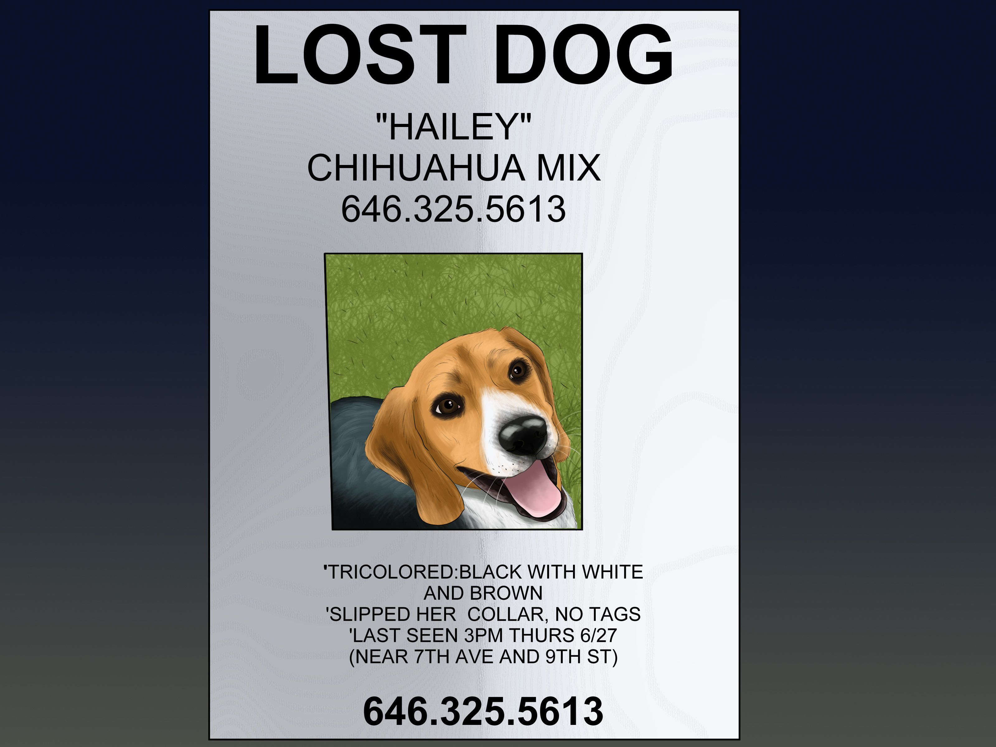 006 Simple Missing Dog Flyer Template High Def  Lost PosterFull