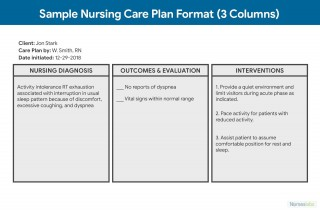 006 Simple Nursing Care Plan Template High Def  Free Pdf Download320
