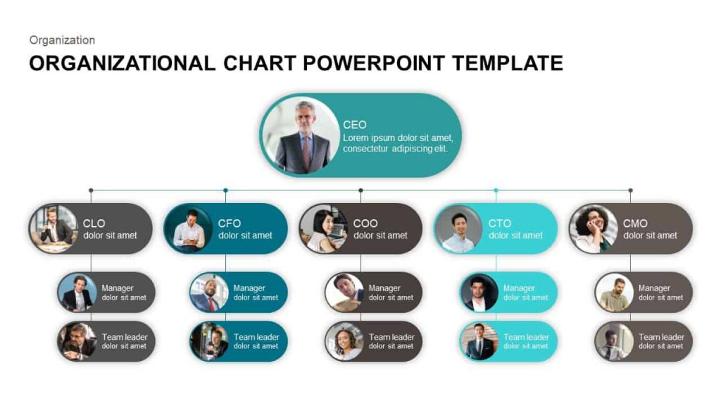 006 Simple Org Chart Template Powerpoint Image  Free Organization Download Organizational 2010Large