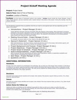 006 Singular Project Kickoff Meeting Template Excel Design 320