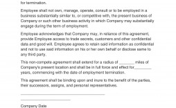 006 Staggering Non Compete Agreement Florida Template High Def