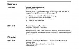 006 Stirring Resume Template Word 2003 Free Download Sample  Downloads
