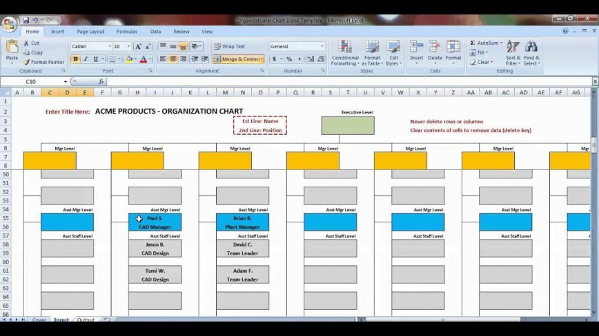 006 Striking Org Chart Template Excel Photo  Organizational Free Download 2010