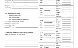 006 Stupendou Sale Call Report Template Design  Free Weekly Excel Pdf