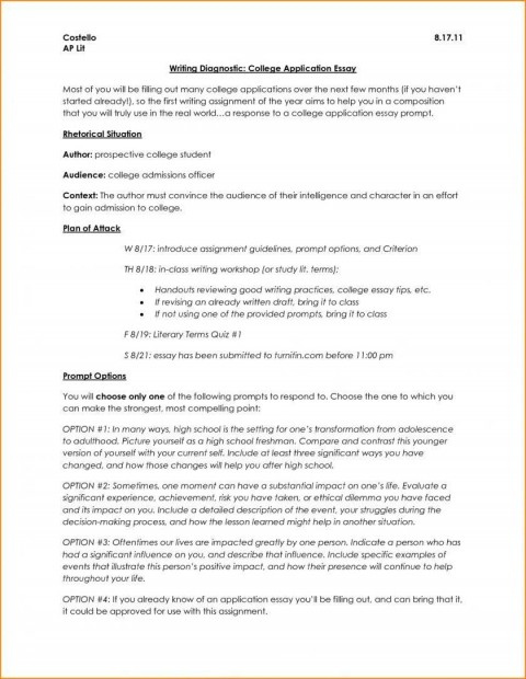 006 Surprising College Application Essay Outline Example Idea  Admission Format Heading Narrative Template480