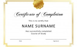 006 Unique Certificate Of Completion Template Free Sample  Training Download Word