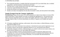 006 Unique College Essay Format Example Sample  Examples Writing Application Admission