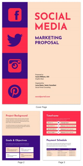 006 Unique Social Media Proposal Template High Resolution  Plan Sample Pdf 2018320