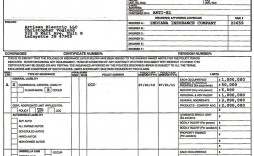 006 Unusual Certificate Of Insurance Template Example  Form Pdf