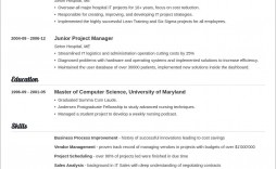 007 Archaicawful Basic Resume Template Word Example  Free Download 2020