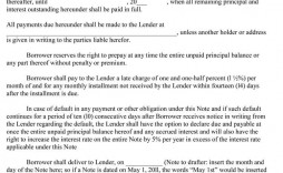 007 Archaicawful Loan Promissory Note Template Photo  Ppp Form Personal Format Student