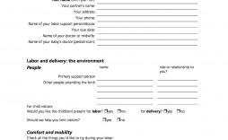007 Archaicawful Printable Birth Plan Template High Definition  Editable Pdf Free