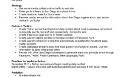 007 Archaicawful Social Media Plan Example Pdf Sample  Template Marketing