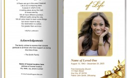 007 Astounding Funeral Program Template Free Example  Download Memorial