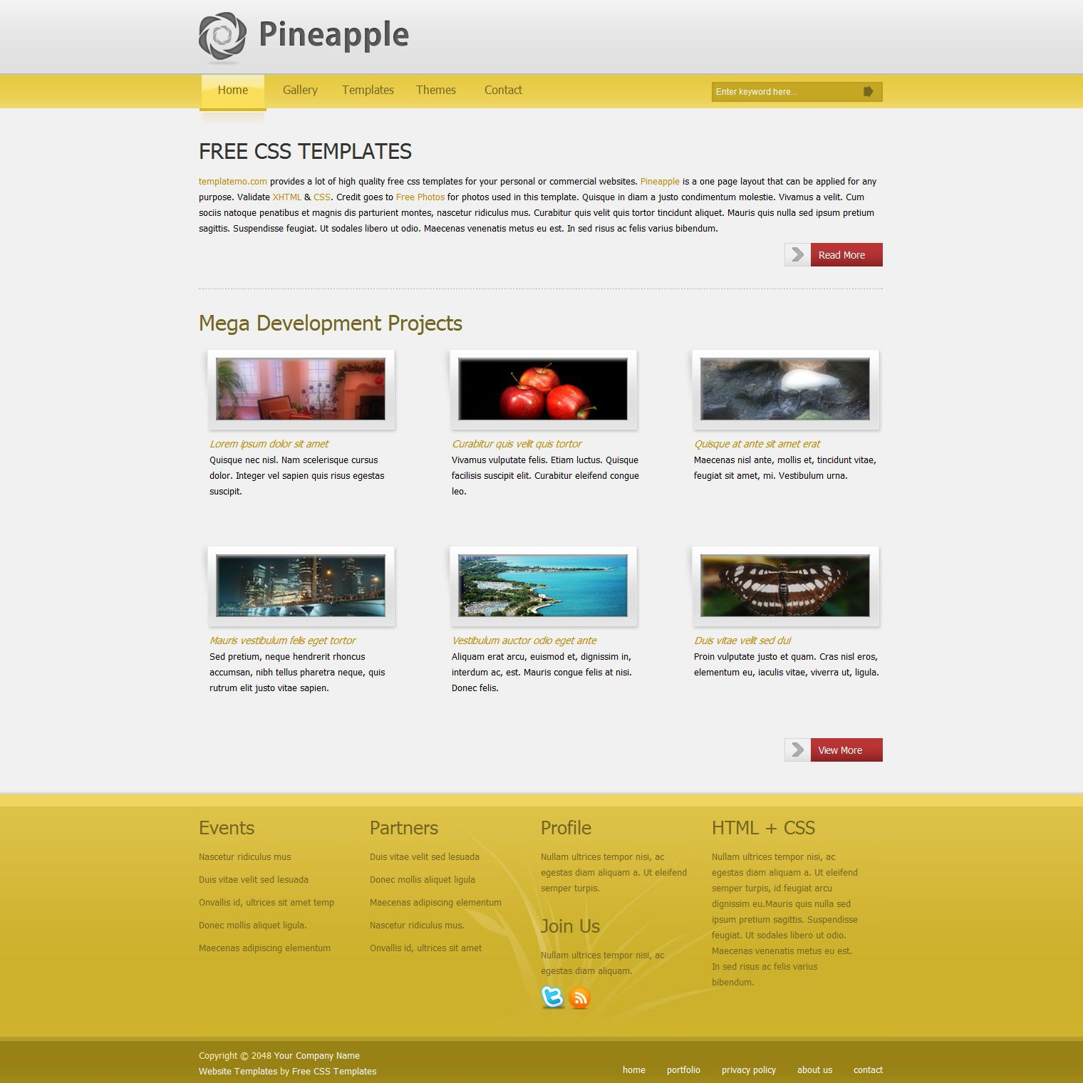 007 Beautiful Free Website Template Download Html And Cs Jquery Slider Photo Full
