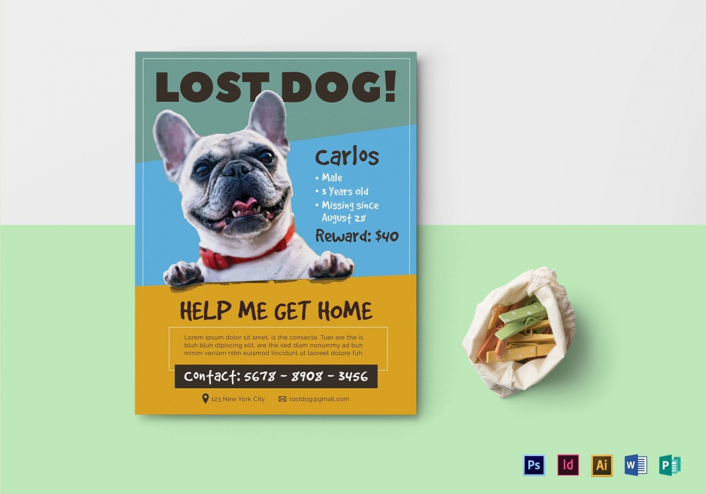 007 Beautiful Lost Dog Flyer Template Design  Printable Missing Pet1400