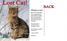 007 Beautiful Lost Pet Flyer Template Example  Word