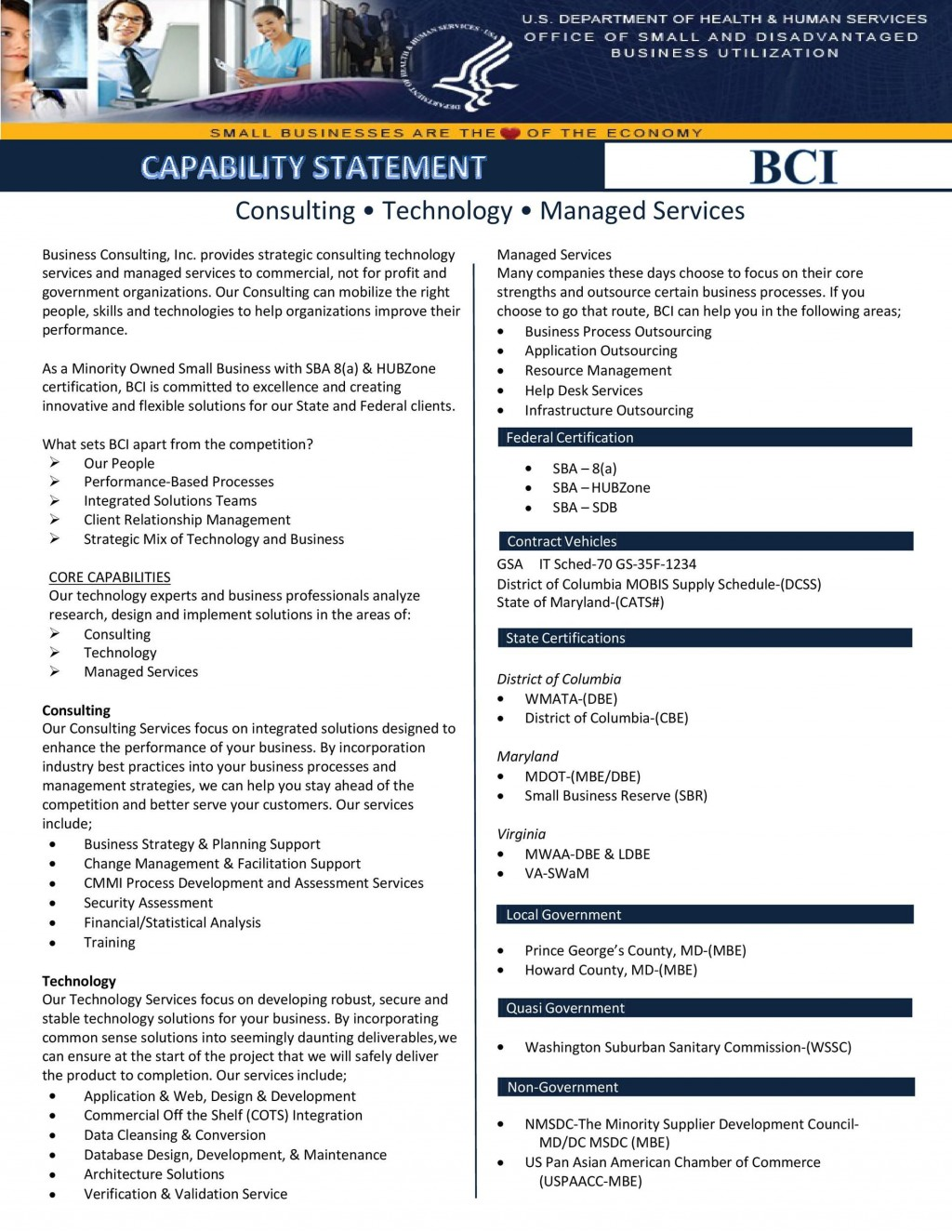 007 Dreaded Capability Statement Template Word Doc Example  Document FreeLarge