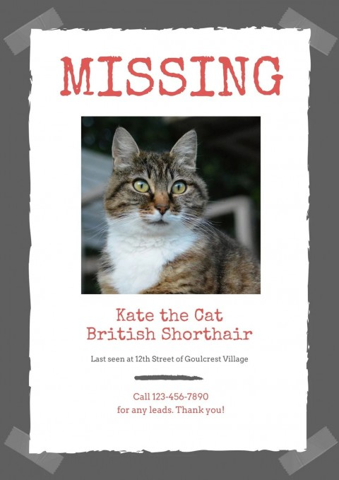 007 Dreaded Missing Pet Poster Template Highest Clarity  Word Free480