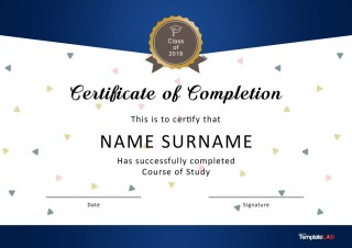007 Excellent Certificate Of Award Template Word Free Sample 320