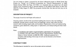 007 Excellent Request For Proposal Template Word Free High Def