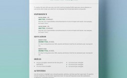 007 Excellent Resume Template Free Word Design  Download Document 2020 For Fresher