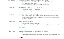 007 Excellent Resume Template Microsoft Word 2020 Sample  Free