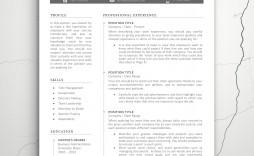 007 Excellent Teacher Resume Template Microsoft Word 2007 High Resolution