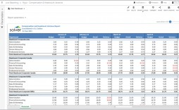 007 Exceptional Line Item Budget Form Sample  Template Spreadsheet Format