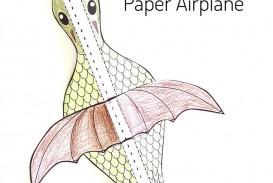 007 Fantastic Printable Simple Paper Airplane Instruction Photo  Plane
