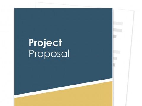 007 Fantastic Web Development Proposal Template Free Highest Quality 480