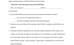 007 Fascinating Virginia Separation Agreement Template Highest Clarity  Marital Marriage